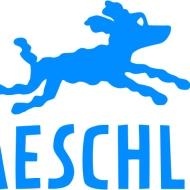 Logo_Baeschlin Verlag_Hund_blau